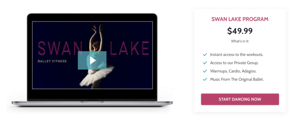 Lazy Dancer Studio - Swan Lake Program
